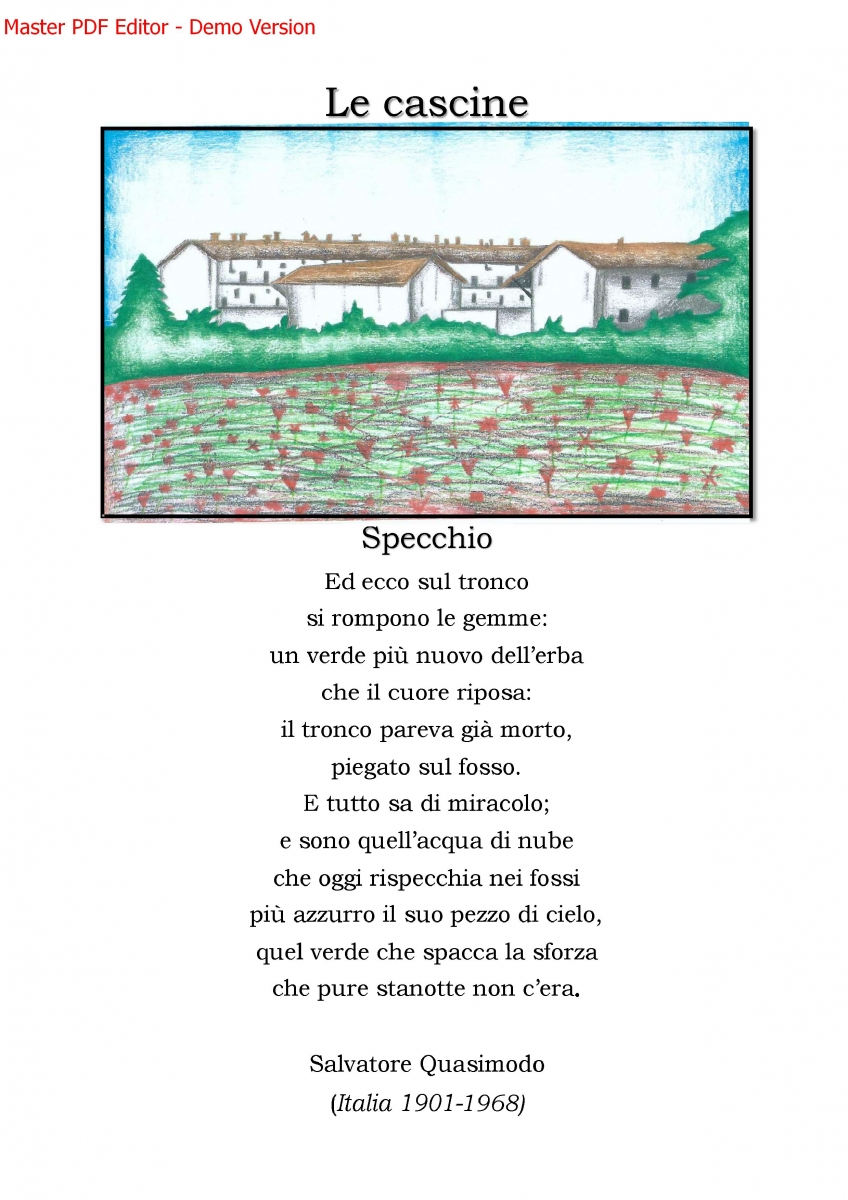 ebook_arte_bareggio.jpg_12