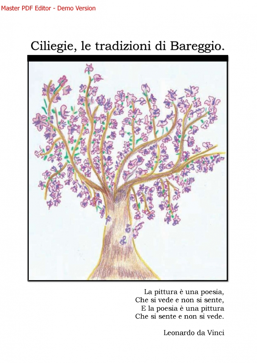 ebook_arte_bareggio.jpg_4